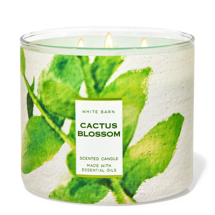 Nến thơm Bath & Body Works White Barn Cactus Blossom, 411g